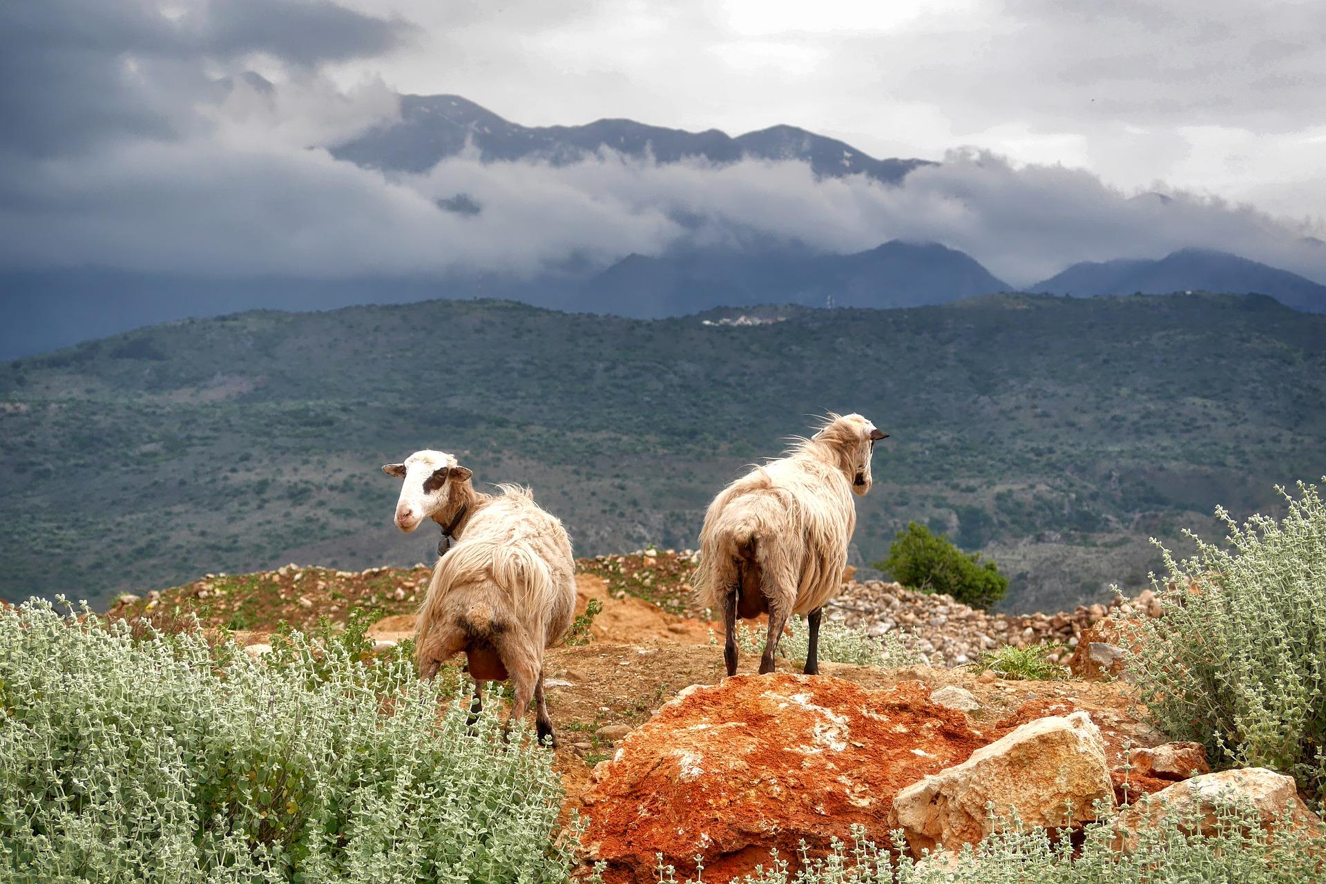A Samaris szurdok, Görögország Grand Canyon-ja