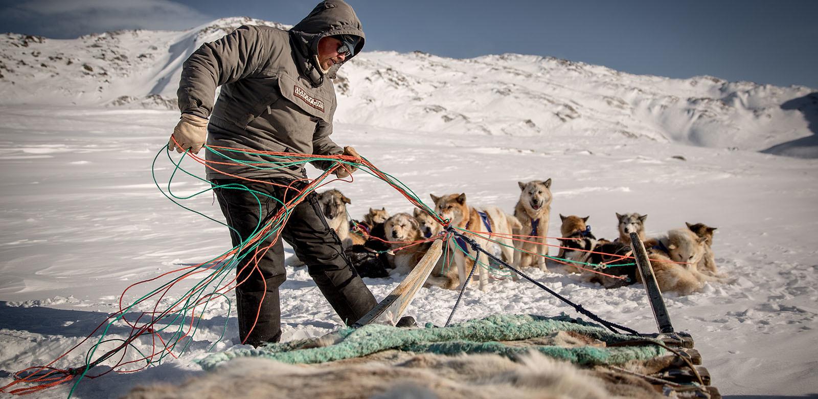 Kutyaszánozás és sarkifények a jégsapkán